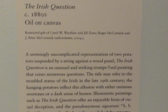 The_Irish_Question_Placard