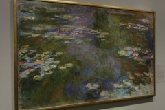Water_Lily_Pond