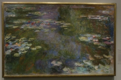 Water_Lily_Pond_2