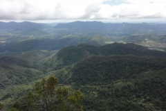 View_from_top_of_Mount_Warning