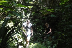 Tracking_through_the_jungle
